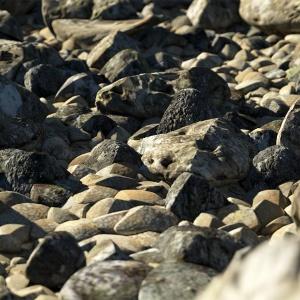 eroded stones preset 1