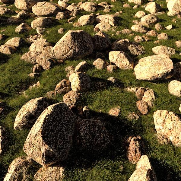 voronoi stones with plants
