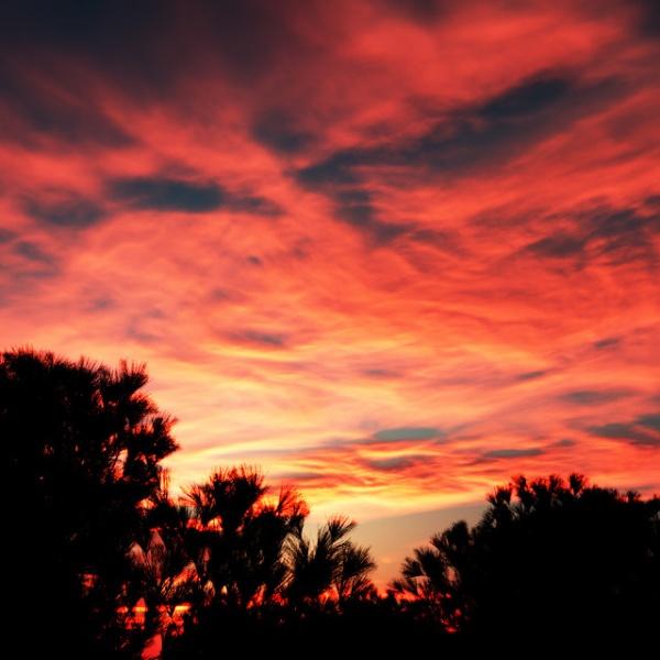 Sunset Terragen scene
