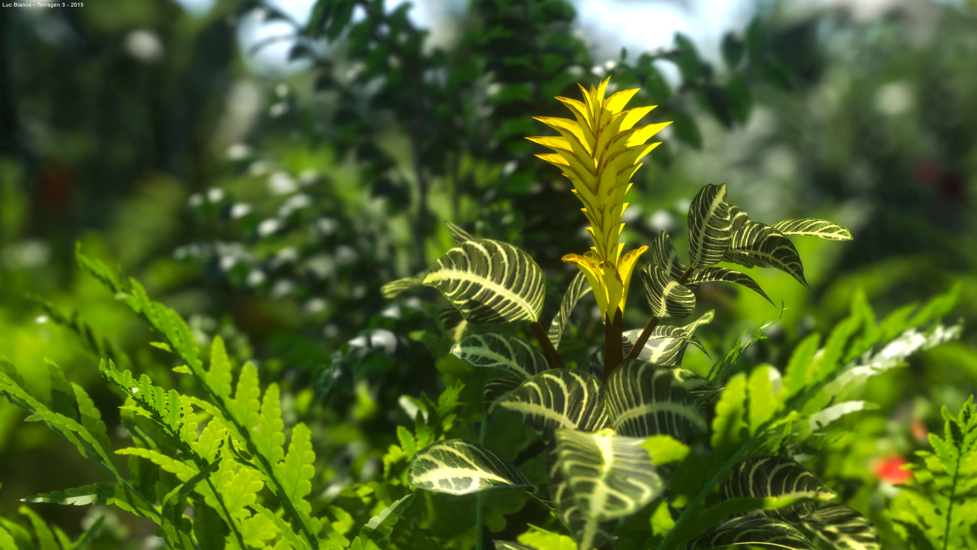 Tropical XFrog plants and flowers - scene rendered in Terragen 4 alpha