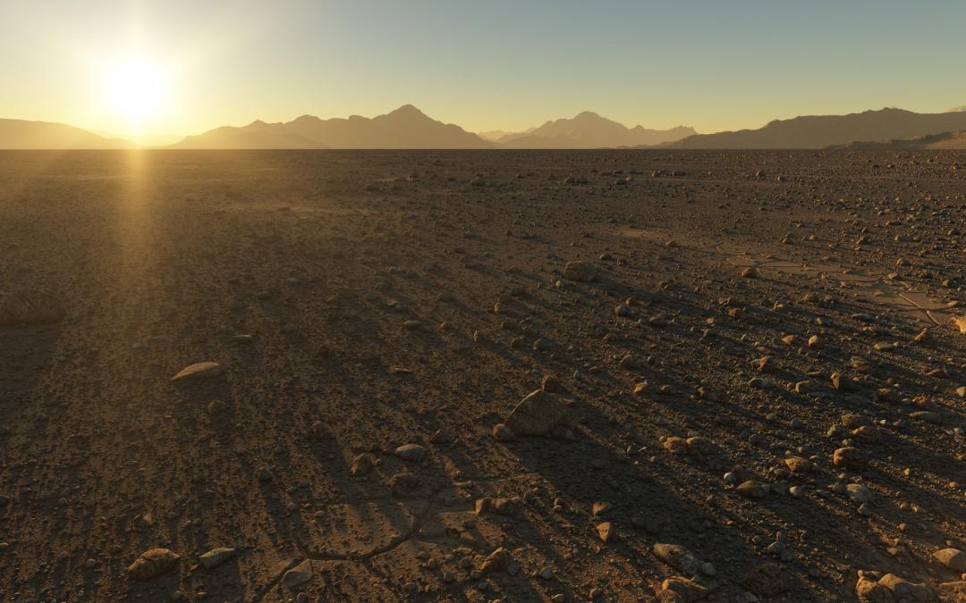 Desert sunset scene