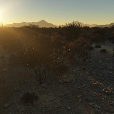 desert_scene_view1