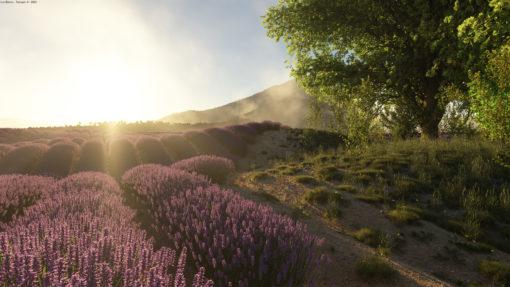Lavender scene for Terragen 4